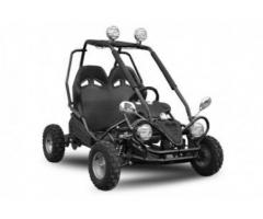 ATV Phantom 450W 36V Eco Buggy New Model