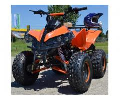 ATV ReneGade Warrior 125cc, Import Germania