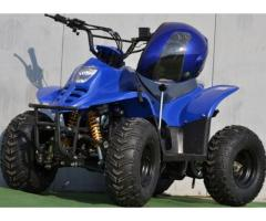 Atv Junyor BigFoot R6 125cc+Accesori Bonus