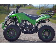 Atv Montain Warrior 125cc, Roti de 8 inch